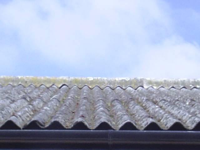 Asbestos Cement roof